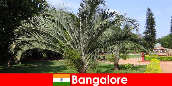 Bangalore behageligt klima hele året rundt for hver udlænding værd en tur