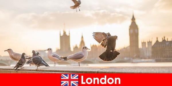 Steder af interesse i London for internationale besøgende