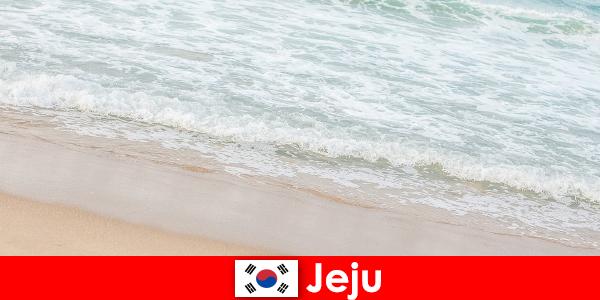 Jeju med sit fine sand og klart vand et ideelt sted for familieferie på stranden