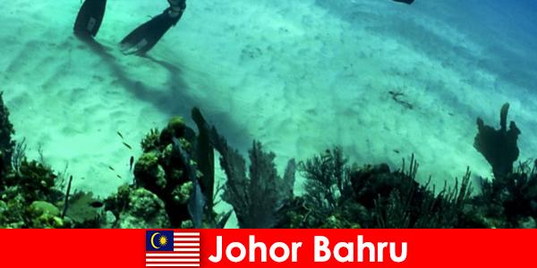 Eventyraktiviteter i Johor Bahru Dykning, klatring, vandreture og meget mere