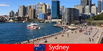 Panoramaudsigt over hele byen Sydney Australien for besøgende fra hele verden