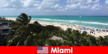 Palm sandstrande bølger venter langsigtede vacationers i paradisiske Miami USA