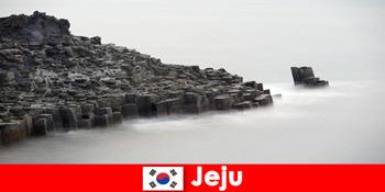 Udlændinge udforsker populære udflugter i Jeju Sydkorea