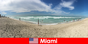 Spændende, hip og unik føler unge rejsende i det varme Miami USA