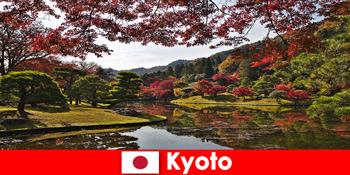 Rejse til Kyoto Japan for den berømte efterårsløv farve