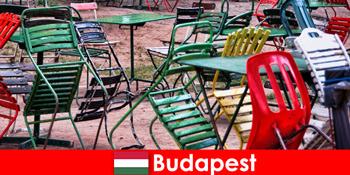 Interessante bistroer, barer og restauranter venter rejsende i smukke Budapest Ungarn